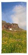 Spring Mountain Beach Towel