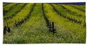 Spring Mustard Field Beach Sheet