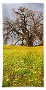 Spring Oak Tree And Wildflowers Beach Towel