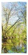 Spring On A Pennsylvania Stream, Fairmount Park, Philadelphia Beach Towel