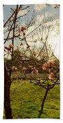 Spring Orchard In Williamsburg Beach Towel