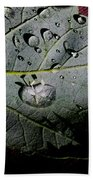 Spring Rain Beach Towel