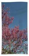 Spring Redbud Tree Beach Towel