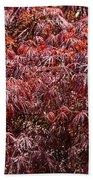Spring Reds Beach Towel