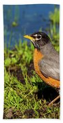 Spring Robin Beach Towel