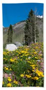 Spring Rocky Mountain Landscape Beach Towel