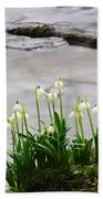 Spring Snowflake Beach Sheet