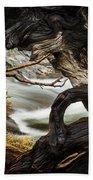 Spring Textures Beach Towel