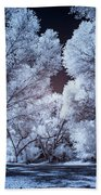 Spring Trees And Shadows Beach Towel