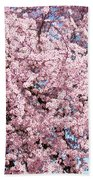 Spring Trees Art Prints Pink Springtime Blossoms Baslee Troutman Beach Towel