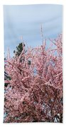 Spring Trees Bossoming Landscape Art Prints Pink Blossoms Clouds Sky  Beach Towel