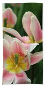 Spring Tulips 152 Beach Towel