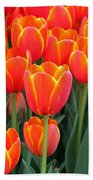 Spring Tulips 207 Beach Towel