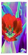 Spring Tulips - Photopower 3146 Beach Towel