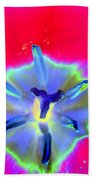 Spring Tulips - Photopower 3167 Beach Towel