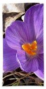 Spring Violet Beach Towel