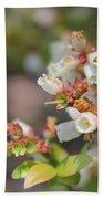 Spring Wildflower Beach Towel