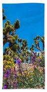 Springtime At The Canyon Beach Towel