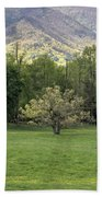 Springtime In Cades Cove Great Smoky Mountains National Park Beach Towel