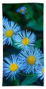 Springtime In Grand Teton Beach Towel