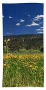 Springtime In Hat Creek Beach Towel