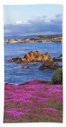 Springtime In Pacific Grove Beach Towel