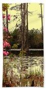 Springtime In The Swamp Beach Towel