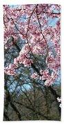 Springtime Seasonal Pink Blossom Flowers Baslee Beach Towel