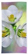 Springtime Triplets By Kaye Menner Beach Towel