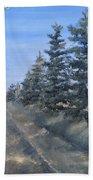 Spruce Trees Along A Snowy Road  Beach Towel