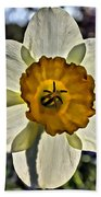 Square Daffydowndilly Beach Towel