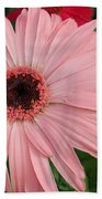Square Framed Pink Daisy Beach Towel