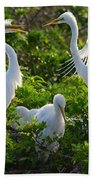 Squawk Of The Great Egret Beach Towel