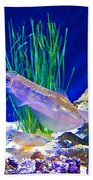 Squid In Monterey Aquarium-california Beach Towel