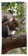 Squirrel 7 Beach Towel