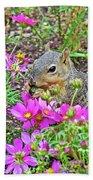 Squirrel Among Coreopsis In Huntington Gardens In San Marino-california   Beach Towel