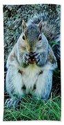 Squirrel Friend Beach Towel