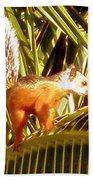 Squirrel In Palm Tree Beach Towel