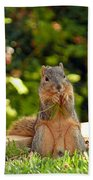 Squirrel On A Log Beach Towel
