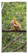 Squirrel Standoff Beach Towel