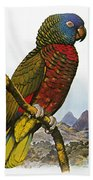 St Lucia Amazon Parrot Beach Towel
