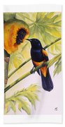 St. Lucia Oriole And Papaya Beach Towel