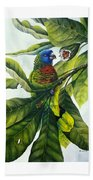 St. Lucia Parrot And Fruit Beach Towel