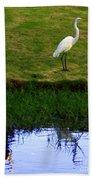 St Thomas Great Egret At The Lake Beach Towel