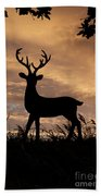 Stag 002 Beach Towel