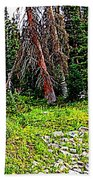 Stag Forest Beach Towel