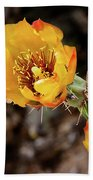 Staghorn Cactus Blossons Beach Towel