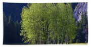 Stand Of Trees Yosemite Valley Beach Towel
