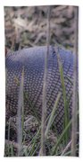 Standing Armadillo Beach Towel