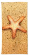 Star Fish Beach Sheet